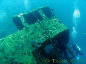 Captain Cabin, King Cruiser Wreck