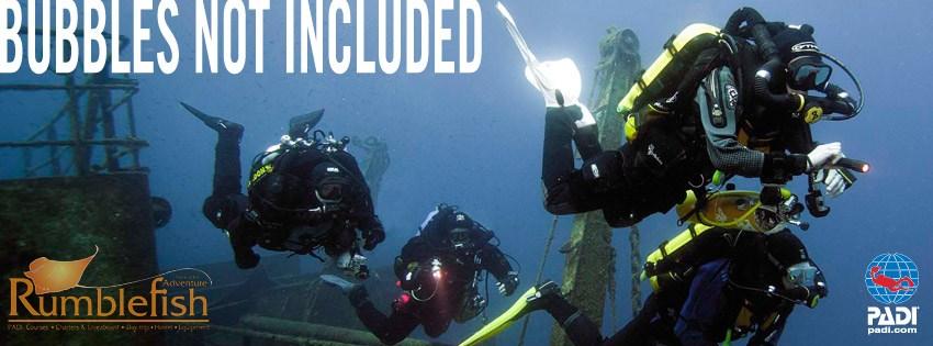 PADI Rebreather Diver